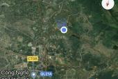 Cần bán 11000m2 đất thổ cư cạnh đường lớn tại Quốc Oai, Hòa Lạc