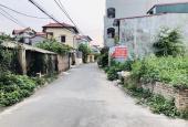 Bán 44.2m2 đất lô góc đường ô tô Đông Dư Thượng, Gia Lâm. LH 0987498004