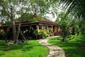 Bán khu vườn Bình Thuận xanh mát 5.5ha có căn biệt thự gỗ và 5000 gốc thanh long, 15 tỷ, sổ riêng