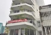 Cho thuê căn hộ đẹp MT Tôn Thất Đạm, Q. 1, có thang máy, full NT, giá rẻ