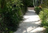 Đất nền 117m² thổ cư 100% 🔵 chùa Linh Phước Phú An Hòa Châu Thành Bến Tre