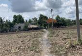 1000m2 sổ riêng đất Phước Khánh,dân cư dông,đường xe hơi tới đất