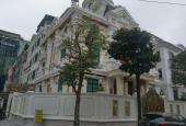 Bán nhà biệt thự mặt phố Quảng An. Diện tích 600m2, mặt tiền 20m x 4T, giá 238 tỷ