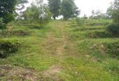 Khuôn viên hoàn thiện 8ha ở Lương Sơn giá rẻ. LH 0917.366.060/0948.035.862.