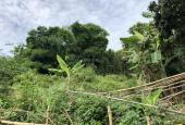 Bán đất thổ cư giá rẻ tại thị trấn Kỳ Sơn, Hòa Bình diện tích 1.415m2
