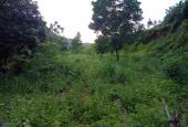 Cần bán gấp đất làm nhà xưởng tại Lương Sơn, Hòa Bình diện tích 5.100m2