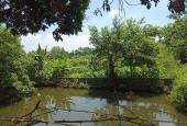 Bán đất thổ cư tuyệt đẹp tại Lương Sơn, Hòa Bình với diện tích 4660m2