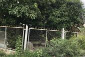 Bán nhà vườn MT đường Kênh 3, xã Bình Lợi, DT 34 x 160m, 5000m2, 10.5 tỷ. LH 0978.778.791