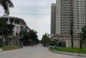 Bán nhanh 54m2 đất dịch vụ Tân Tây Đô thị trấn trạm Trôi, Hoài Đức giá đầu tư