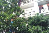 Mặt ngõ tại Trần Duy Hưng - Nguyễn Thị Định kinh doanh sầm uất. Giá 16.8 tỷ, LH 0984056396