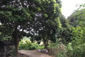 Bán đất dân tặng nhà 3251m2 thuộc thôn Khe Khoai, xã Thống Nhất, Hoành Bồ