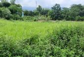 Hot, bán gấp 1600m2 đất ở Nhuận Trạch, Lương Sơn, Hoà Bình giá cực rẻ, view cực kỳ thoáng mát