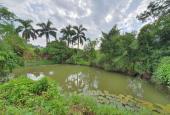 Bán đất làm homestay, nhà vườn tuyệt đẹp tại Lương Sơn, Hòa Bình diện tích 9575m2.