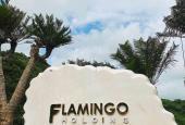 Chính chủ bán căn condotel, full nội thất 5*, giá rẻ dự án Flamingo