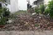 Bán hai lô đất tại Xuân Thới Sơn, Hóc Môn và Tân An Hội Củ Chi