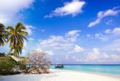 Sở hữu biệt thự mặt biển Phú Quốc với giá cực rẻ