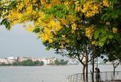 Hot! Nhà view Hồ Tây phố Đặng Thai Mai, Quảng An, Quảng Khánh 60m2 x 4T, 11.5 tỷ đường 8m