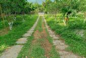 Khuôn viên mơ ước 3500m2 ở Lương Sơn giá rẻ. LH 0917.366.060 - 0948.035.862