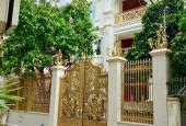 Nhà bán chính chủ biệt thự mới đẹp đường Bành Văn Trân, Tân Bình. (DT: 553m2) giá 48 tỷ
