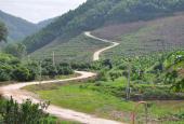 Chỉ 12 nghìn/m2 đất trồng rừng ở Lạng Sơn
