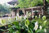 Vip & rẻ nhất Lương Sơn, khuôn viên nhà sàn ao cá 6100m2 ở Lương Sơn, Hòa Bình. Giá thời Covid