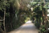 Bán 4.300m2 đất Long Phước, Quận 9, gần sông, thích hợp đầu tư và làm nhà vườn nghỉ dưỡng