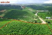 Bán lỗ mùa Covi, đất vườn cây ăn trái view sông Đại Nga. L/H 0903128018