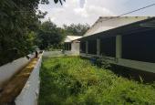 Cần bán gấp trang trại 9ha 3 mặt tiền Sông Xoài, Huyện Phú Mỹ (Tân Thành), Bà Rịa - Vũng Tàu