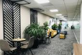 Cho thuê văn phòng trọn gói tầng 11 Việt Á, số 9 Duy Tân, Cầu Giấy 18m2 - 20m2 - 30m2 - 50m2 -100m2
