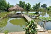 Bán gấp biệt thự Lương Sơn, DT 1.6 ha giá rẻ