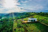 Đất nhà vườn - nhà và phát triển cây trồng
