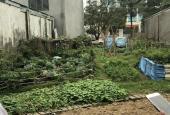 Cần bán đất đối diện kho bạc tỉnh Phú Thọ