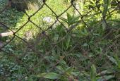 Bán gấp đất đẹp Phố Trạm, Cổ Linh, Long Biên, 65m2 3tỷ, cực hiếm