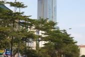 Bán đất mặt ngõ KD phố Đào Tấn, 48m2, mặt tiền 4.8m, giá nhỉnh 3 tỷ