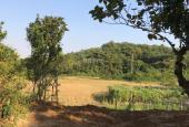 Cần bán 4000m2 thổ cư view cánh đồng tuyệt đẹp tại Lương Sơn, Hòa Bình