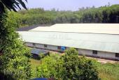 Bán trang trại lợn, 16ha, Hòa Bình, đầy đủ sổ và giấy phép. LH: 0983337986