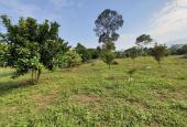 Bán gấp 7.274m2 có 3.044m2 đất ở phù hợp làm nghỉ dưỡng tại Kim Bôi, Hòa Bình
