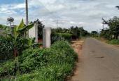 Chính chủ cần bán 3000m2 đất, có sẵn nhà, vườn bơ, sầu riêng