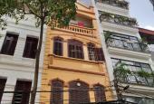 Bán nhà riêng tại Phố Ngụy Như Kon Tum, Phường Nhân Chính, Thanh Xuân, Hà Nội diện tích 40m2 giá