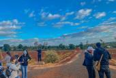 Đất nền KCN Nam PLeiku đang gây SỐT tại Gia Lai chỉ với 1,6 triệu/m2 đặt chỗ ngay hôm nay