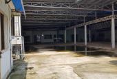 Bán đất tặng xưởng P. Đông Hòa - TP. Dĩ An. DT 1450m2