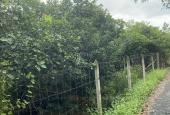 Cần bán vườn cây ăn trái MT đường Cầu Trắng. LH: 0902515238