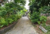 Chính chủ bán đất và nhà xóm Tân Dương, Phường Bách Quang, Tp Sông Công