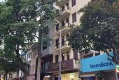 Nhà mặt phố Trần Nhân Tông, Hai Bà Trưng, 300m2, mặt tiền 9.5m, vị trí tòa nhà VP, apartment
