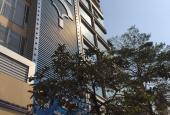 Bán gấp nhà 9 tầng mặt phố Giảng Võ, Đống Đa, DTSD 810m2, thang máy, kinh doanh, 52 tỷ.