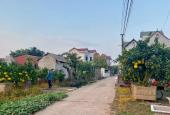Cần bán 1300m2 đất ở Văn Giang, Hưng Yên giá rẻ