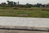 Bán củ tam thất Đa Phúc lô số 37 ở khu dân cư mới Đa Phúc, quận Dương Kinh