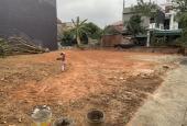 Chính chủ bán 04 lô đất tại An Phú, Hội Hợp, Vĩnh Yên
