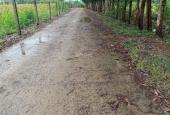 Bán lô đất đẹp 2,7 hecta khu công nghiệp Sông Cầu Khánh Vĩnh, Khánh Hòa