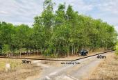 Bán đất vườn 1.200m2 đường oto xã Diên Tân giá chỉ 385tr LH 0788.558.552